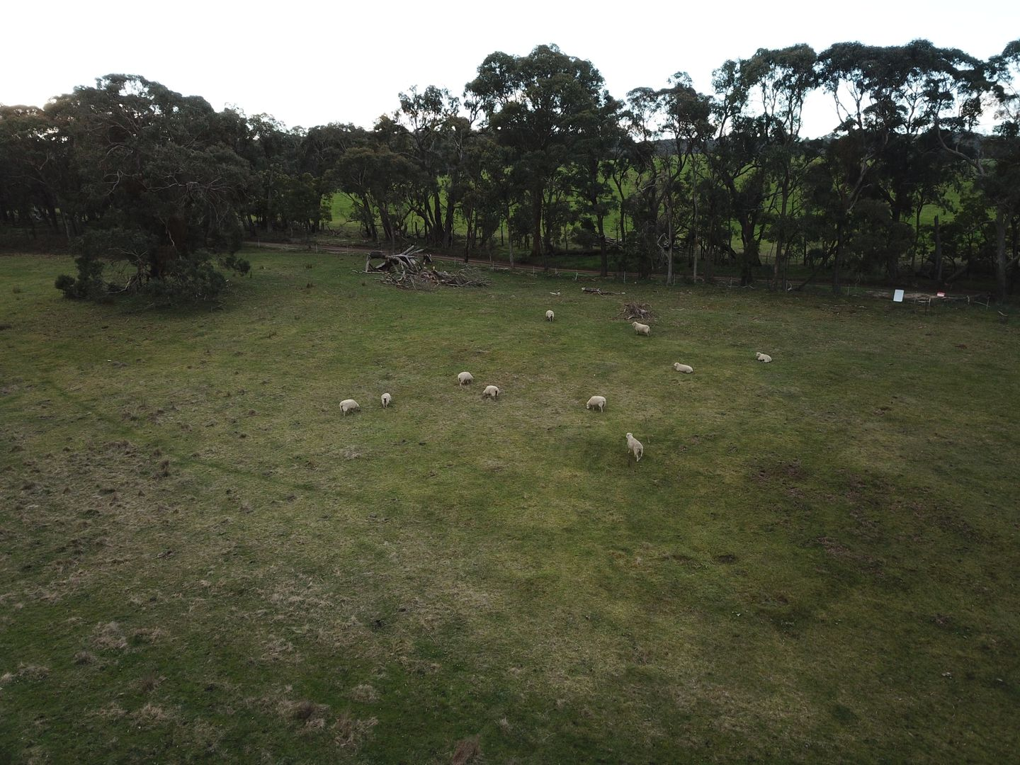 C/A 7D Maguire Rd, Waterloo VIC 3373, Image 2