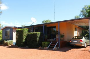 Picture of 113 Newcastle Street, York WA 6302