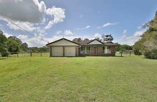Picture of 17 Morrison Ct, Cedar Grove QLD 4285