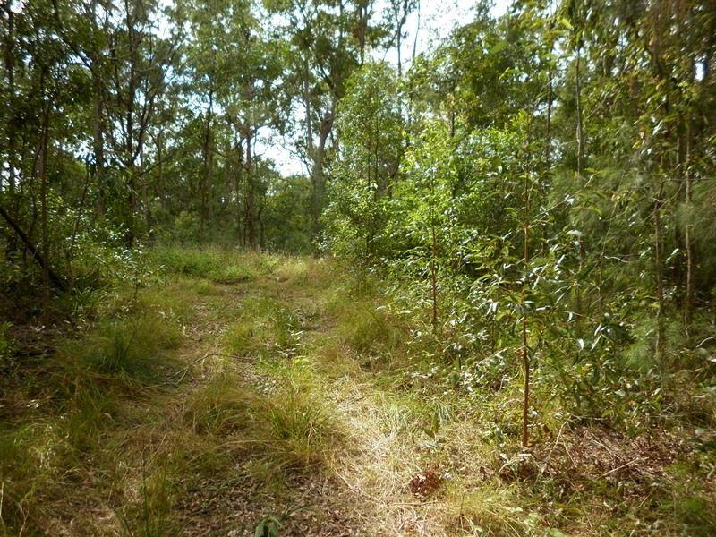 972 Noosa Road, Mothar Mountain QLD 4570, Image 2