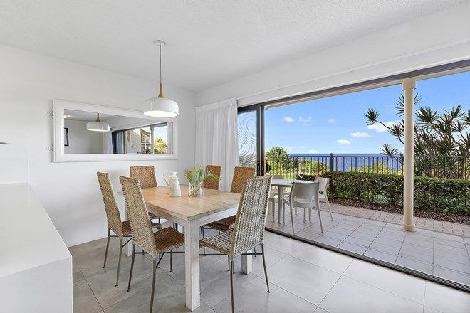 Picture of 7/1 Ross Crescent, SUNSHINE BEACH QLD 4567