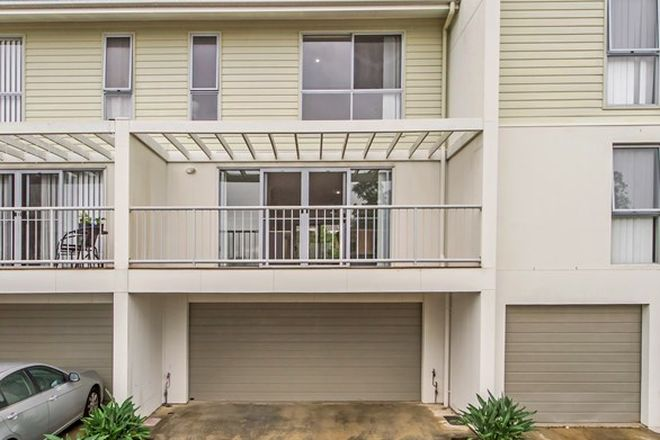 Picture of 9/20 Bedford Road, PIMPAMA QLD 4209