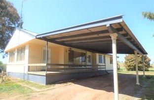 2010 Murringo Road, Murringo NSW 2586