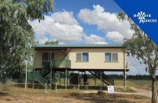 Picture of 104 Elderslie, Winton QLD 4735