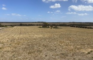Picture of Lot 12 Drevers Road, Streaky Bay SA 5680