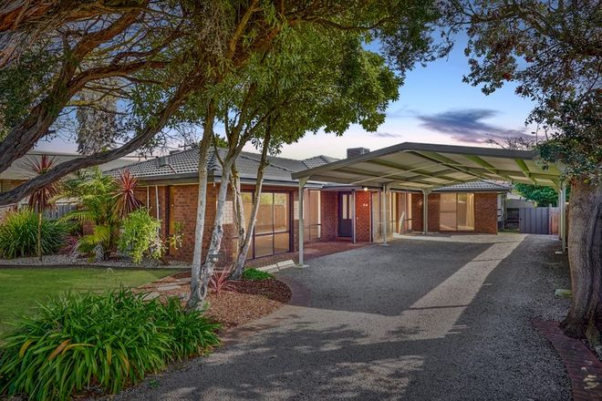 Picture of 64 Whitehead Grove, ROSEBUD VIC 3939
