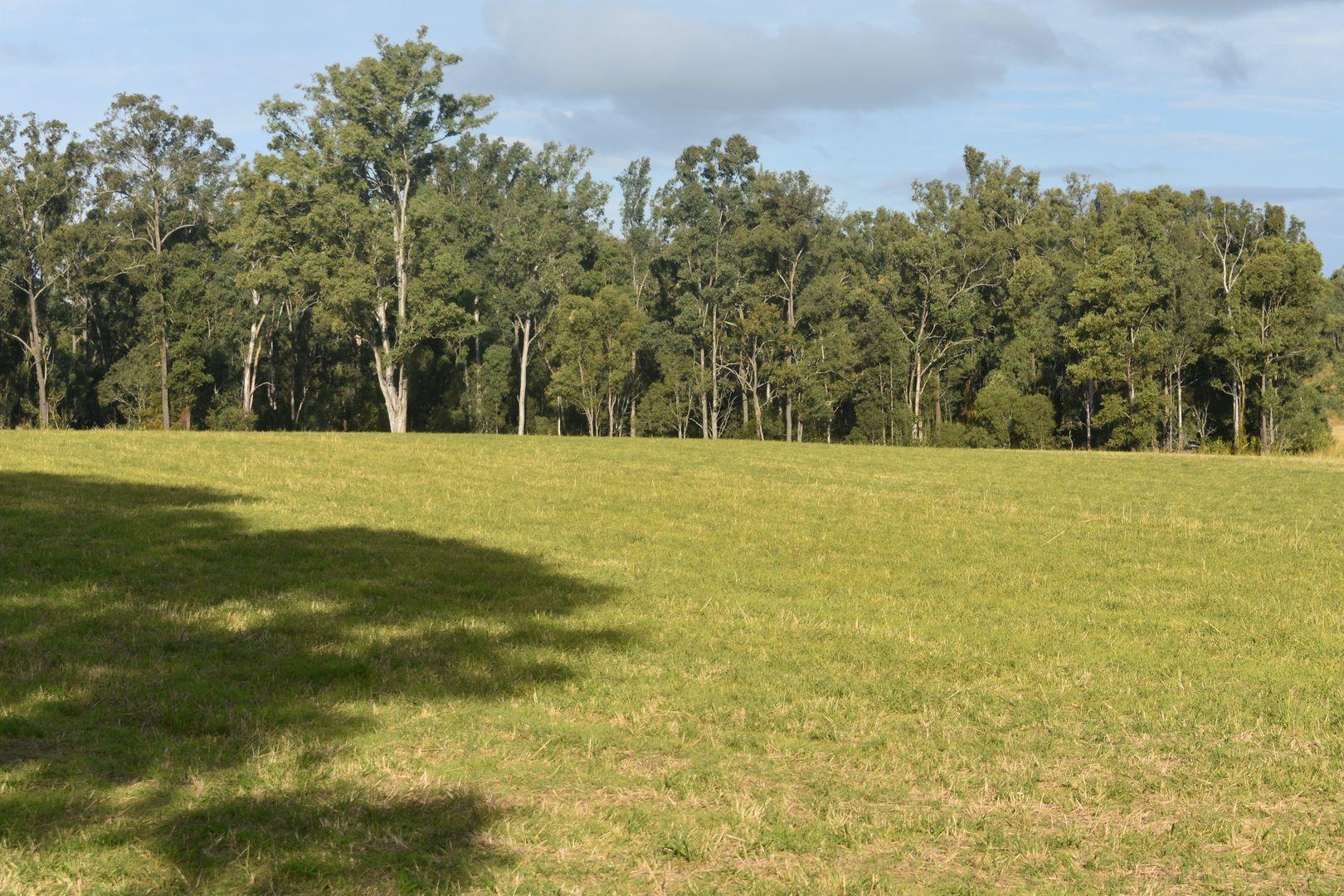 Lot 157 Irrawarra Rd, Mungar QLD 4650, Image 1