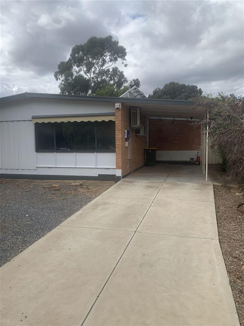 19 Winklebury Road, Elizabeth Vale SA 5112, Image 1