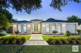 Picture of 24 Cuthbert Avenue, Gulfview Heights SA 5096