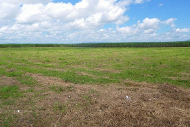 Picture of Lots 1, 3 & 6 Abergowrie & Scotts Roads, LANNERCOST QLD 4850