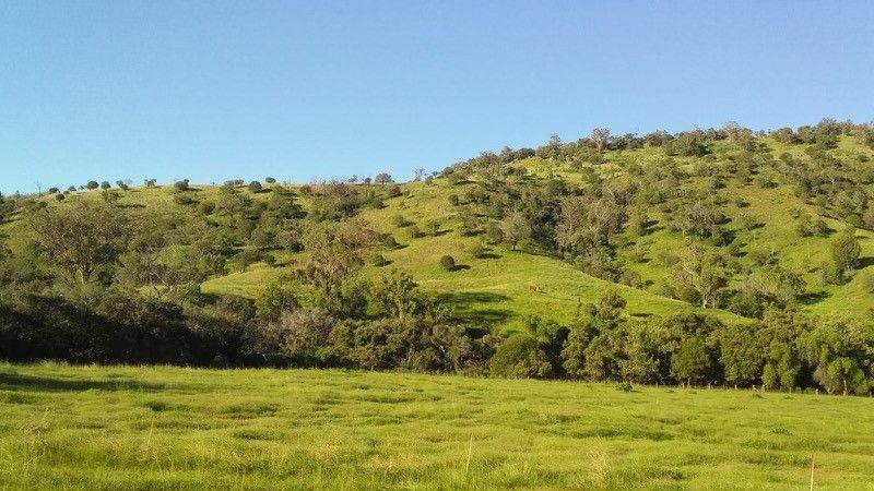 391 Kellys Access Road, Bingara NSW 2404, Image 1