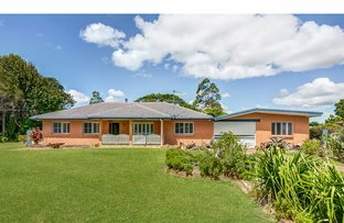 Picture of 54 Maleny Kenilworth Road, Maleny QLD 4552