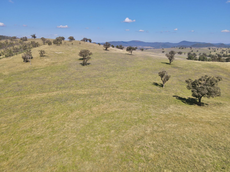 794 Reedy Creek Road 'Oaklands', Mandagery NSW 2870, Image 2