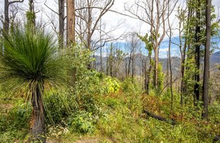 Picture of 489 McHughs Creek Road, South Arm NSW 2449