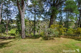 Picture of 1/2 Golden Springs Avenue, Hepburn Springs VIC 3461