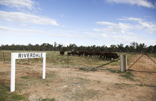 'Riverdale' Murrumbidgee River Road, Carrathool NSW 2711