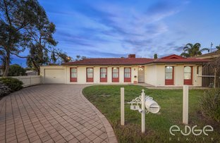 Picture of 8 Wynn Vale Drive, Gulfview Heights SA 5096