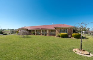 Picture of 683 Spring Terrace Road, Forest Reefs NSW 2798