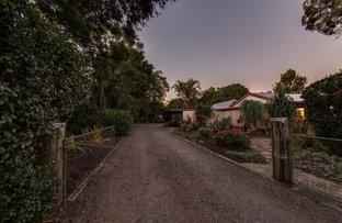 53  Bowen Rd, Glass House Mountains QLD 4518