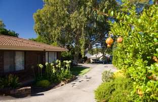 Picture of 3/38 Station Avenue, Blackwood SA 5051