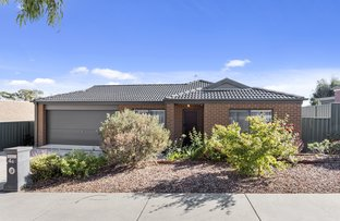 Picture of 4B Everlasting  Rise, Kangaroo Flat VIC 3555
