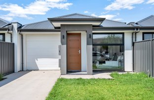 Picture of 59A Pildappa Avenue, Park Holme SA 5043