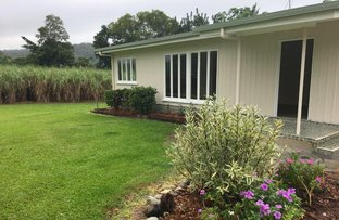 Picture of 187 BAMBOO CREEK ROAD, Bamboo QLD 4873
