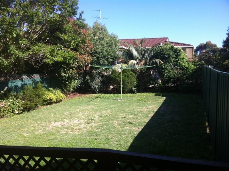 1A Alexander Street, Penshurst NSW 2222, Image 1