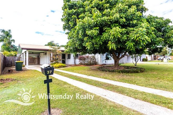 Picture of 37 Spalla Drive, PROSERPINE QLD 4800