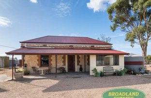 Picture of 33 McAnaney Road, Langhorne Creek SA 5255