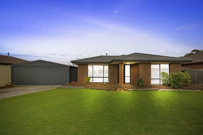 Picture of 17 Dulcify Court, KEILOR DOWNS VIC 3038