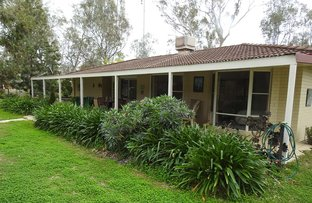 Picture of 19 Lily Street, Violet Town VIC 3669