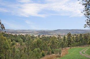 314 Moonabung Road, Vacy NSW 2421