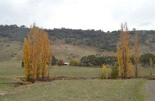 Picture of 1223 Munderoo-Ournie Rd Ournie via, Tumbarumba NSW 2653
