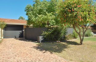 Picture of 31b Chester Avenue, Dianella WA 6059