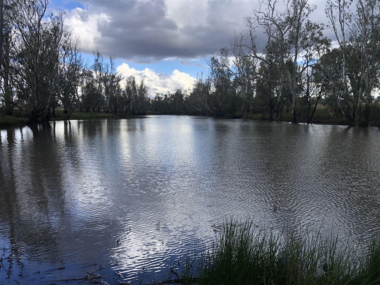 Dalby QLD 4405, Image 1