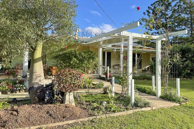 Picture of 1306 Collins Creek Road, COLLINS CREEK NSW 2474
