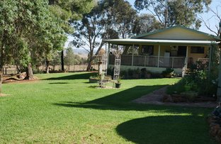 Picture of 91 Deveril Rd, Leeton NSW 2705