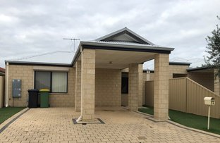 Picture of 8A Hazlett Way, Canning Vale WA 6155