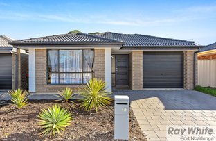 Picture of 12 Kuta Crescent, Aldinga Beach SA 5173