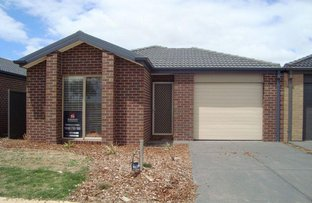 16 Misty Meadow Grove, Truganina VIC 3029