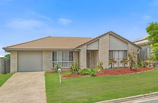 Picture of 20 Filbert Street, Upper Coomera QLD 4209