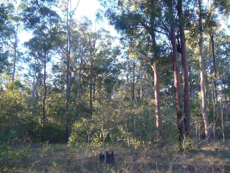 Lot 22 Packer Road, Blackbutt QLD 4314, Image 2