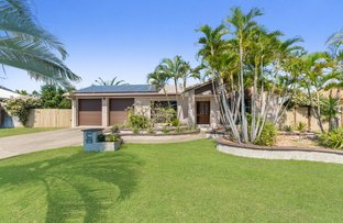Picture of 7 Jonquil Crescent, Annandale QLD 4814