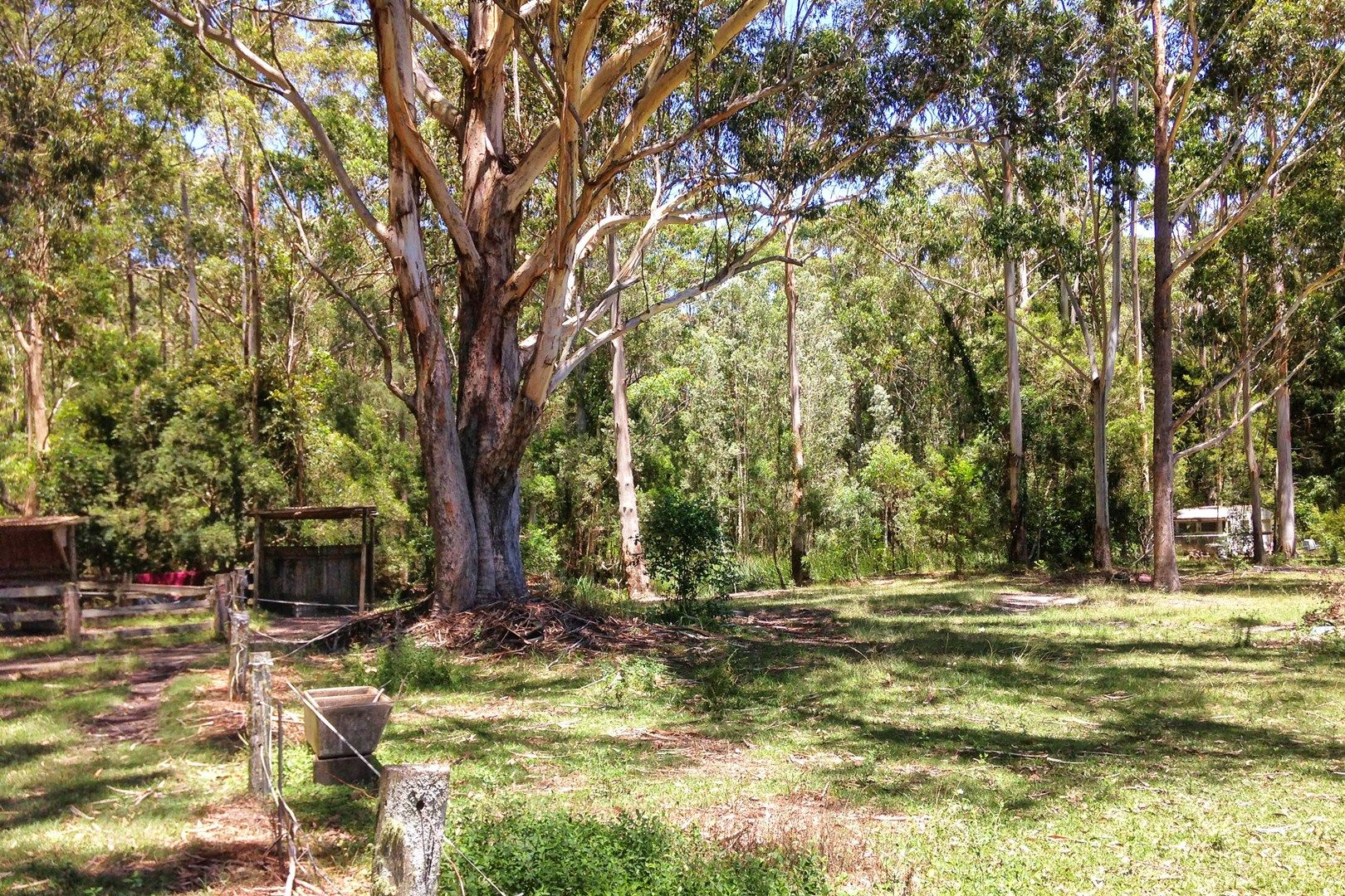 175 Coomba Road, Charlotte Bay NSW 2428, Image 0