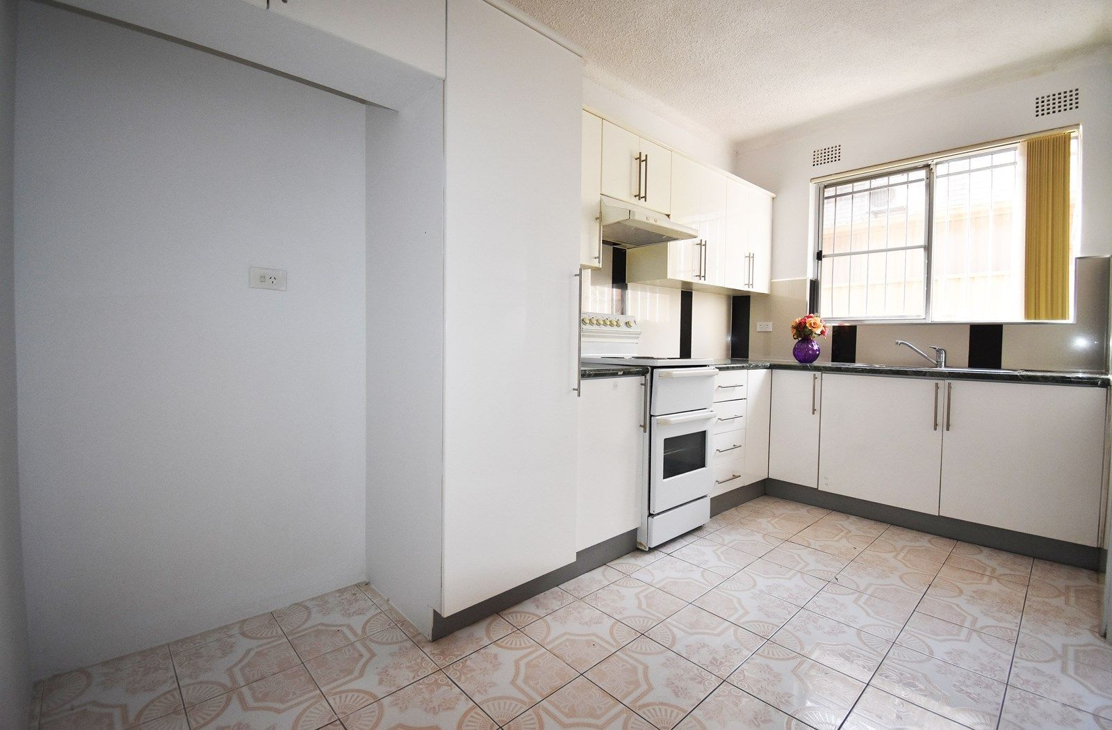 1/117 Longfield Street, Cabramatta NSW 2166, Image 1