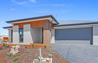 31 Heathwood Way, Ocean Grove VIC 3226
