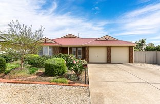 Picture of 20 Hooper Road, Strathalbyn SA 5255