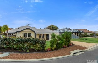 Picture of 60 Mowbray Square, Clarkson WA 6030