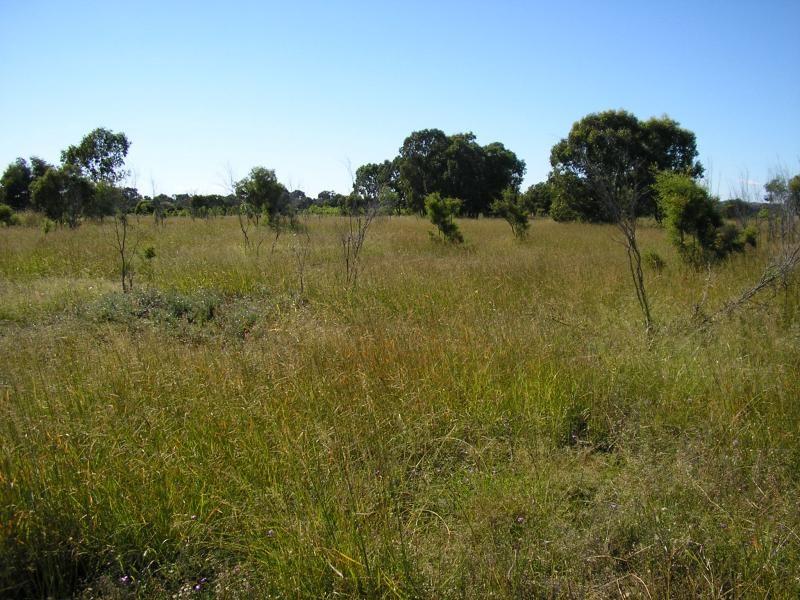 2194 acres North of, Jandowae QLD 4410, Image 2